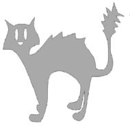 Reflexný motív - mačka