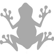 Reflexný motív - žaba