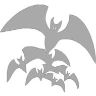 Reflexný motív - netopier