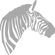 Reflexný motív - zebra