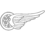 Reflexný motív - koleso s krídlom