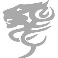 Reflexný motív - lev